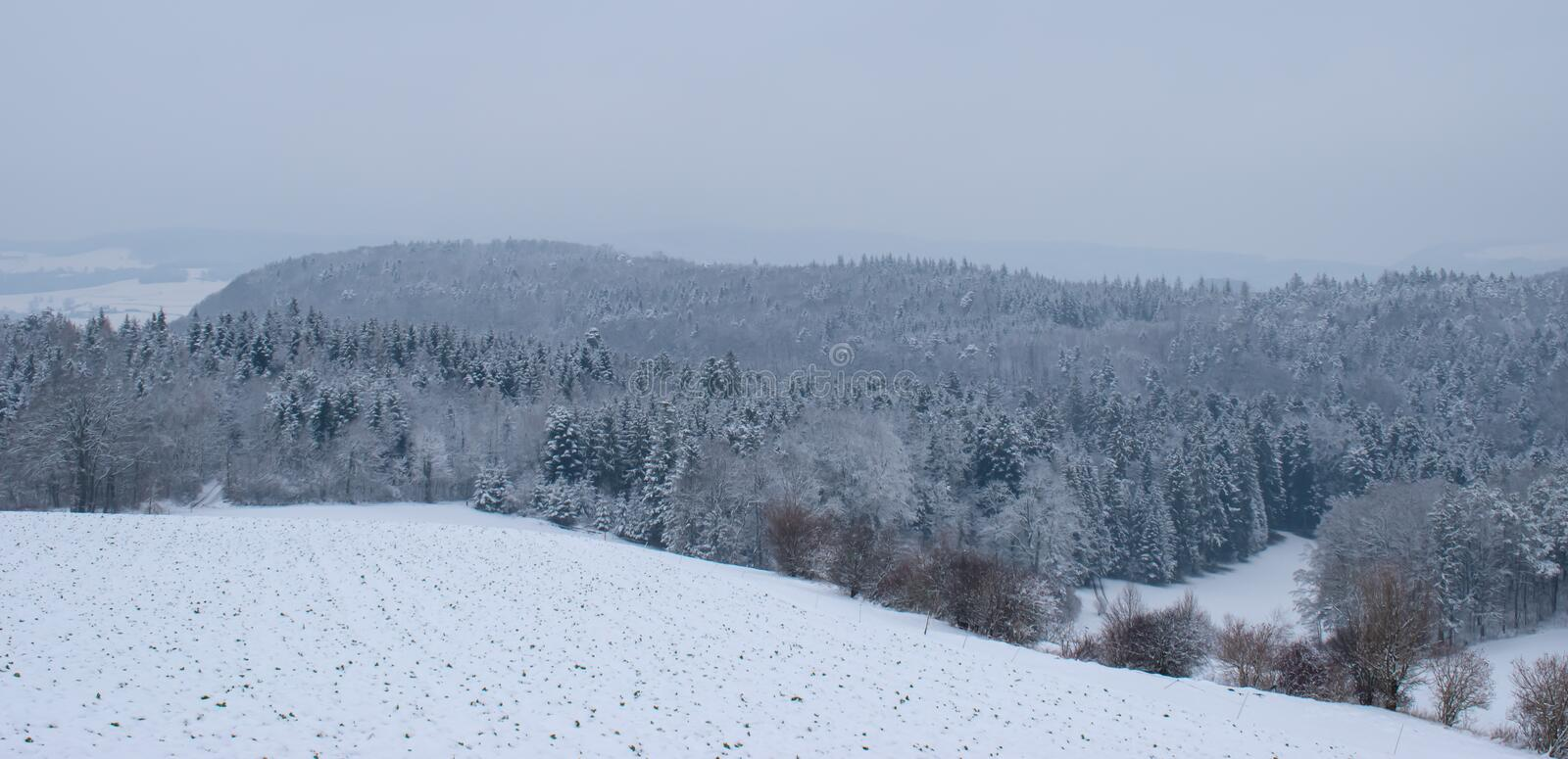 Winter landscape with snowy trees in Switzerland royalty free stock image