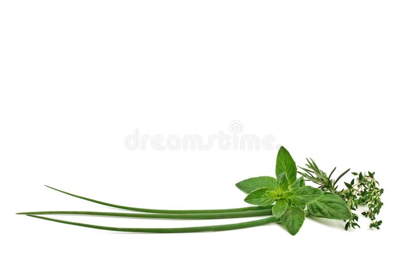 Fresh spices and herbs royalty free stock images