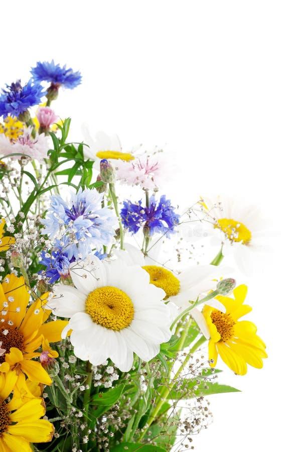 Fresh Spring Bouquet Royalty Free Stock Photos