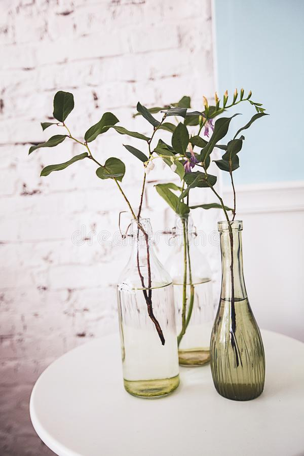 Fresh spring branches with leaves and flowers in stylish glass bottles or vases. Holiday decoration, design, interior for mother`. S Day, Valentine`s Day, March stock photos