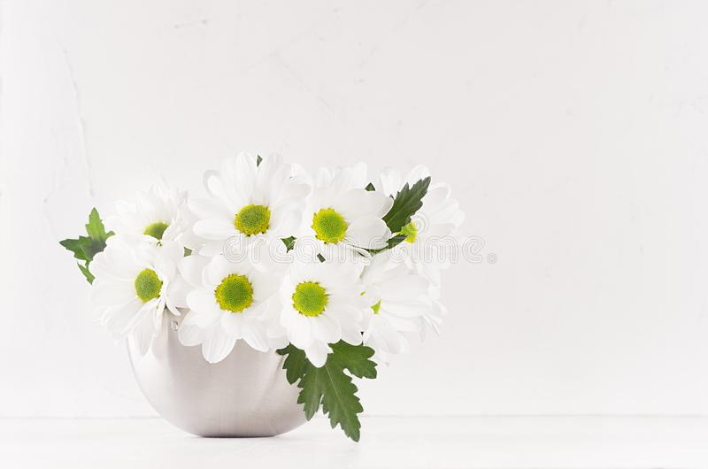 Fresh spring chamomile bouquet with leaves in silver modern vase on white wood table and soft light background. stock images