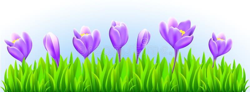 Fresh spring flower border vector illustration