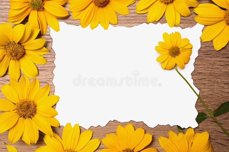 Fresh spring flowers. Greeting card. Yellow flower with a green stem lies on the blank card. Floral vintage frame on a wooden background. Designer composition stock illustration