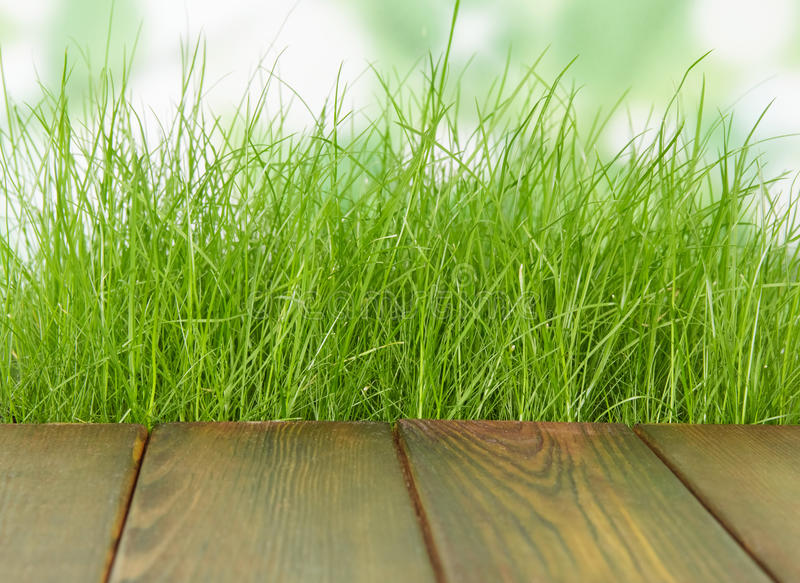 Fresh spring green grass with wood floor royalty free stock photography