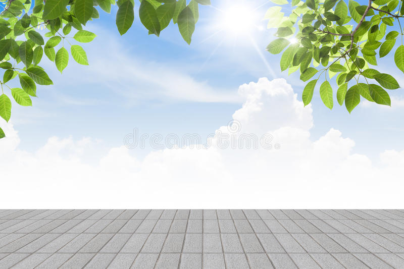Fresh spring green leaves bule sky with concrete floor isolate. Fresh spring green leaves bule sky with concrete floor royalty free stock photo