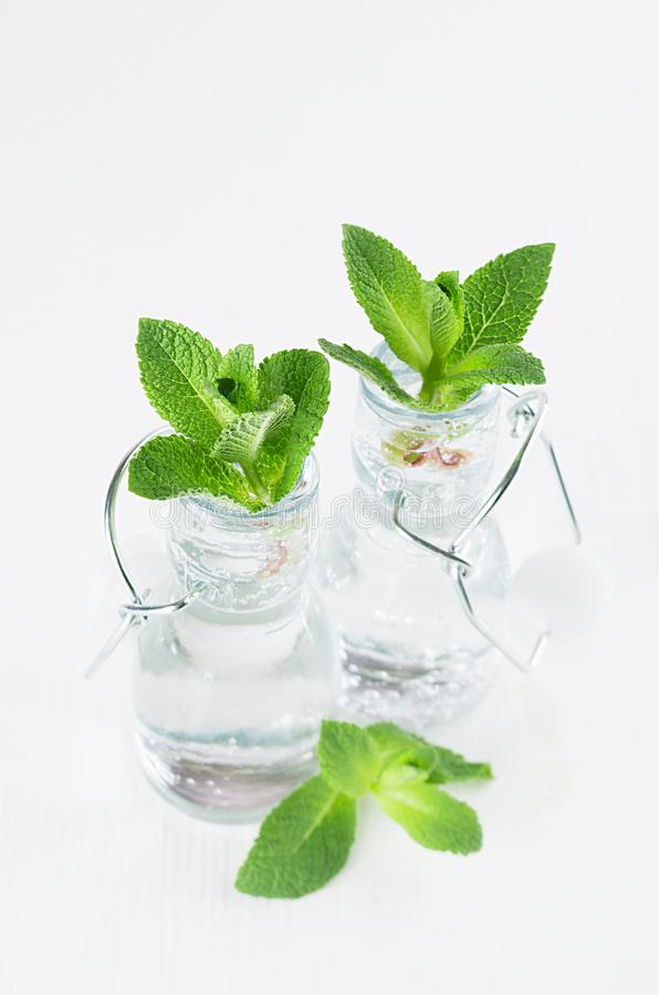 Fresh spring summer drink - green mint twigs in bottles with mineral water on white soft wood background. stock photos