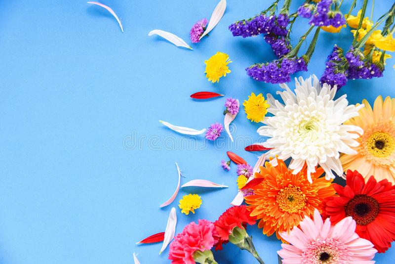 Fresh spring summer flowers frame composition tropical plant gerbera chrysanthemum colorful flower various type. On blue background beautiful - Flat lay Top royalty free stock photography