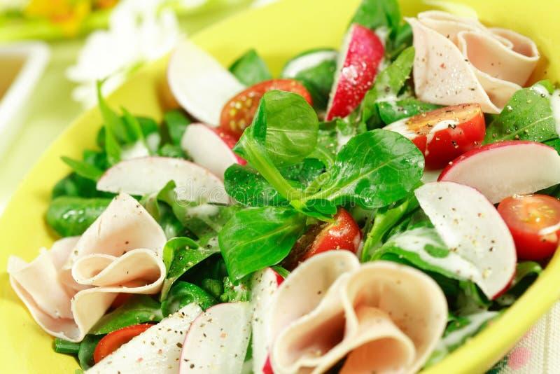 Fresh spring vegetable salad royalty free stock photography