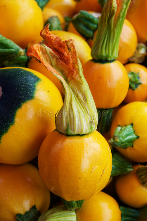 Fresh Squash And Blossoms Royalty Free Stock Photo
