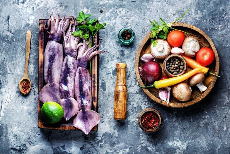Fresh raw squid stock photography