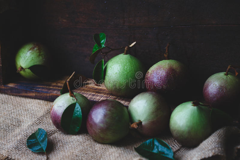 Download Fresh Starapples stock photo. Image of tropical, food - 83701058