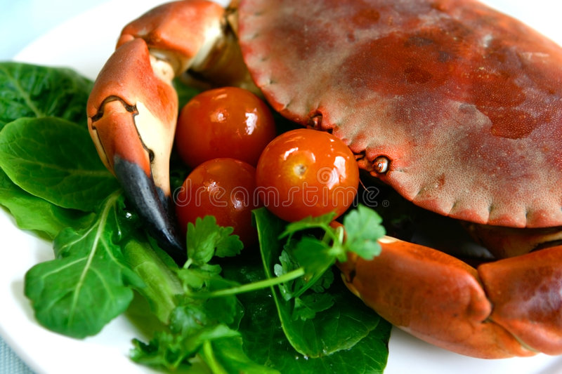 Download Fresh Steamed Crab Stock Images - Image: 2308504