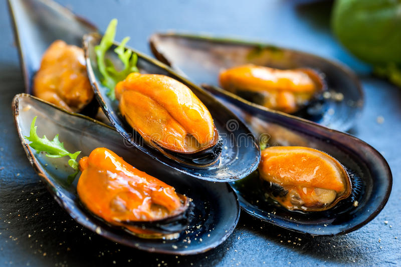 Fresh Steamed sea mussels. stock photos