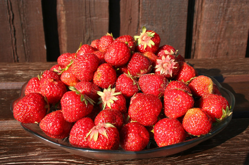 Download Fresh strawberries stock photo. Image of wooden, sweet - 167480