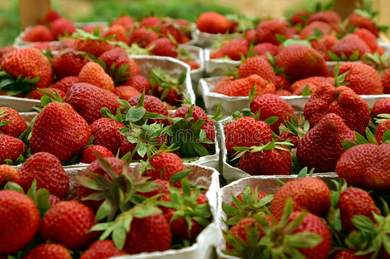 Fresh strawberries. Close-up of severals containers of fresh red strawberries royalty free stock image