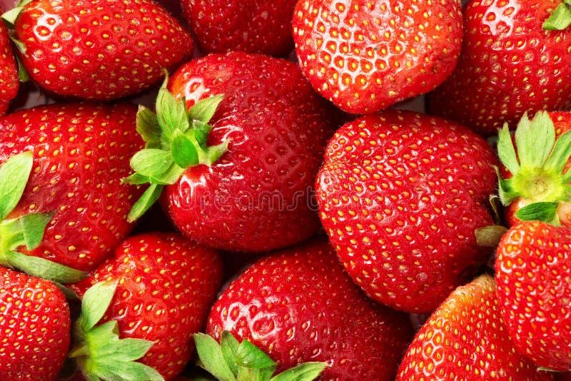 Fresh strawberries background stock photography