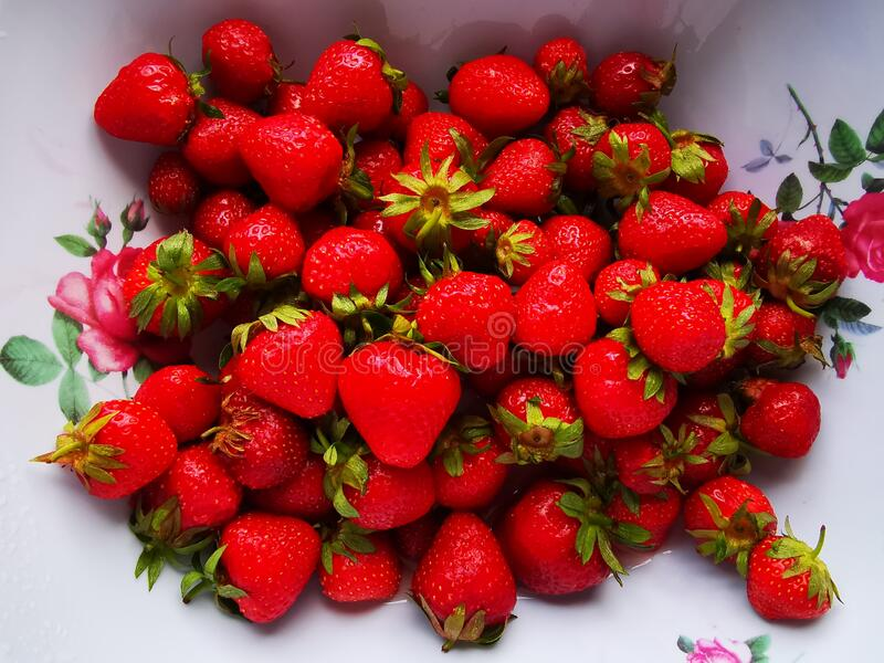 Fresh strawberries in a bowl stock photography