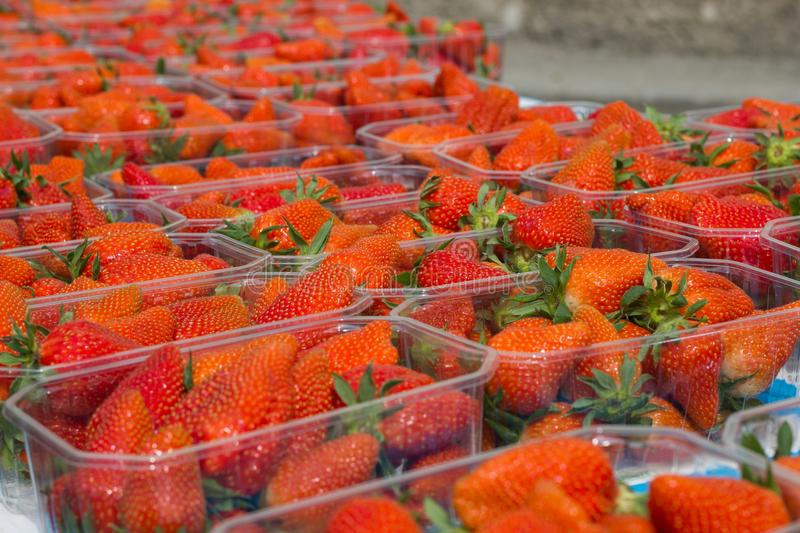 Download Fresh strawberry stock image. Image of sell, market, choice - 22717337