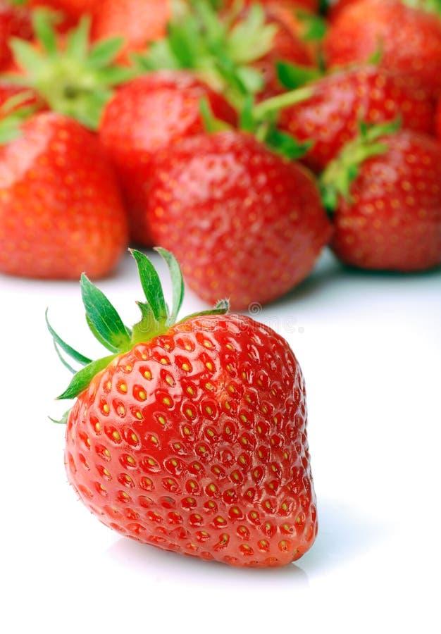 Download Fresh strawberry stock image. Image of freshness, organic - 23530651