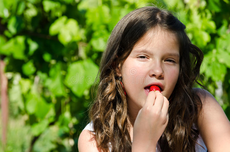 Download Fresh Strawberry Stock Images - Image: 24896084