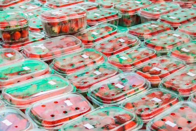 Download Fresh strawberry stock photo. Image of closeup, macro - 25409966