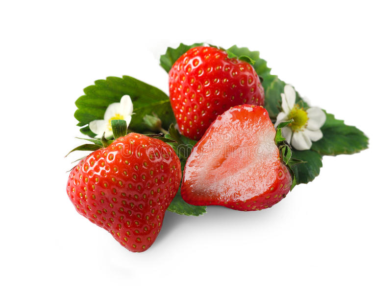 Download Fresh Strawberry Stock Photo - Image: 27429650