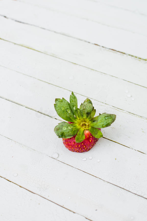 Download Fresh Strawberry stock photo. Image of background, berry - 28798550