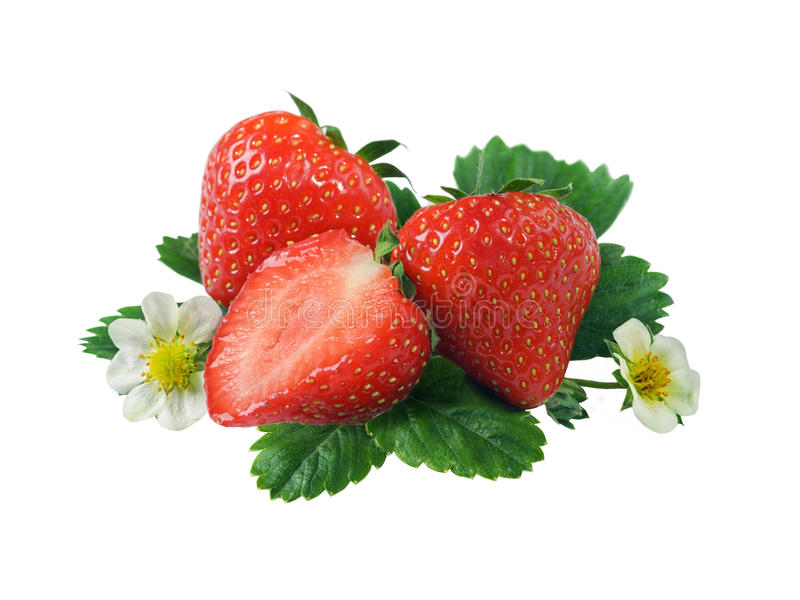 Download Fresh strawberry stock photo. Image of cut, healthy, close - 28938884