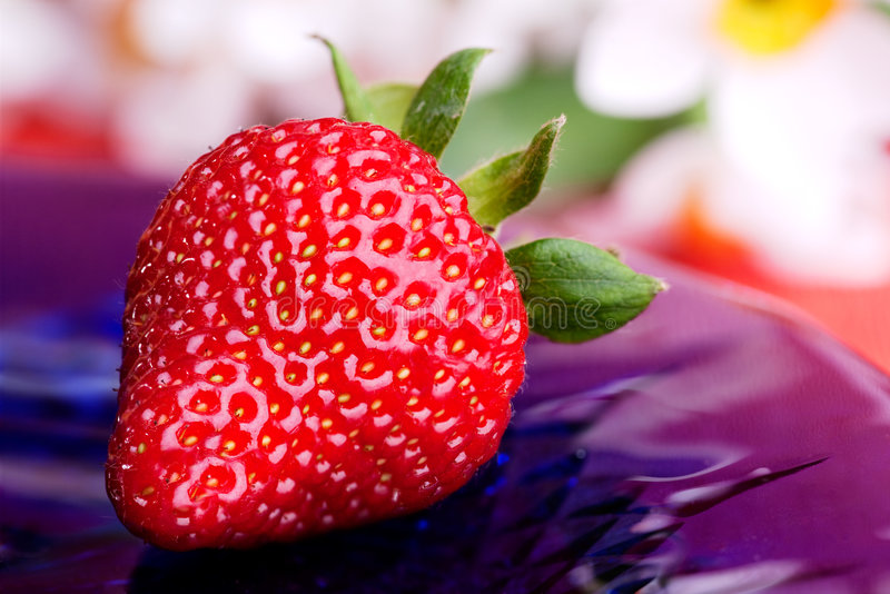 Download Fresh Strawberry stock image. Image of strawberries, plate - 9099279