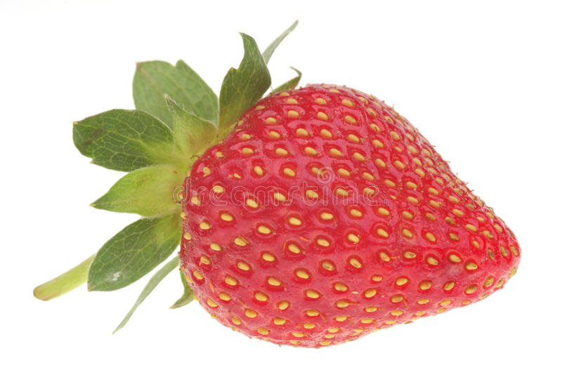 Download Fresh strawberry stock photo. Image of juicy, health - 32360934