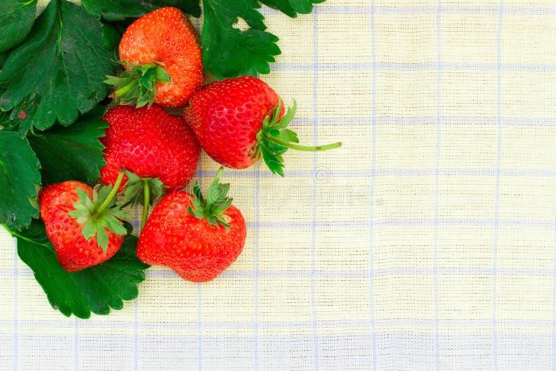 Fresh strawberry isolated on white background. royalty free stock image