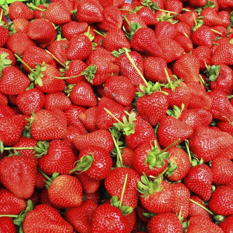 Fresh strawberry. stock photo