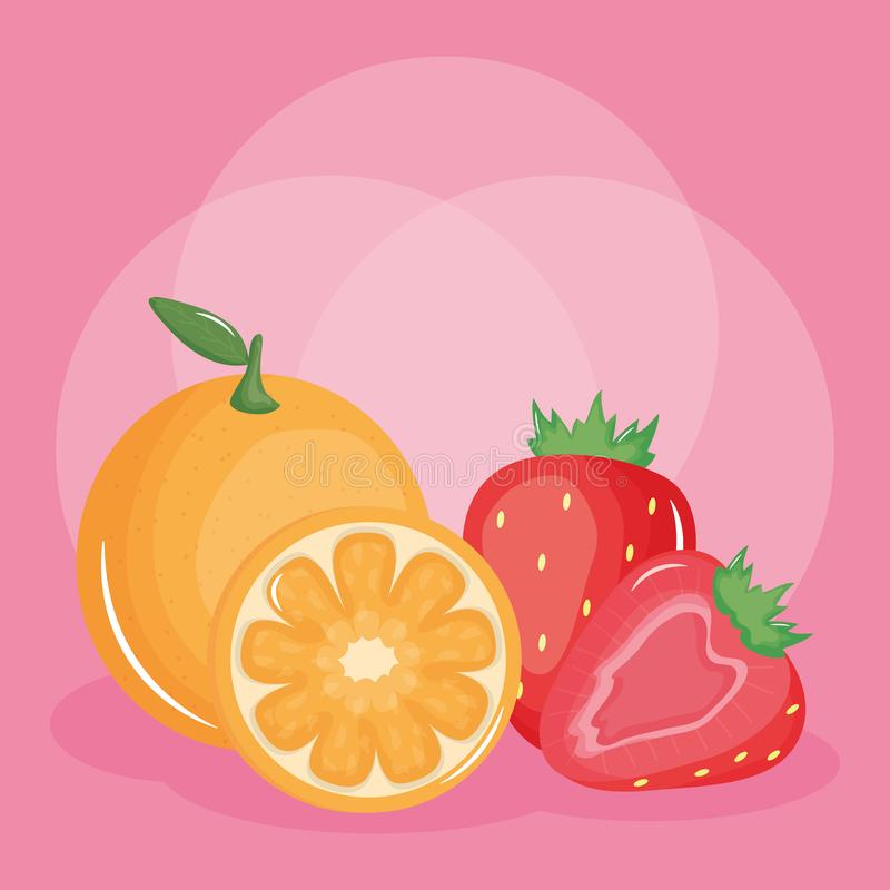 Fresh strawberry and oranges fruits. Vector illustration design stock illustration
