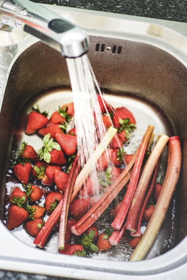 Fresh strawberry and rhubarb being washed in kitchen sink. Preparing ingredients for dessert or jam cooking. Seasonal food from o stock image