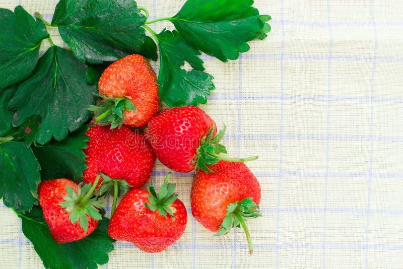 Fresh strawberry on white background. Fresh strawberry on Fabric background / Red fruit / food frame royalty free stock image