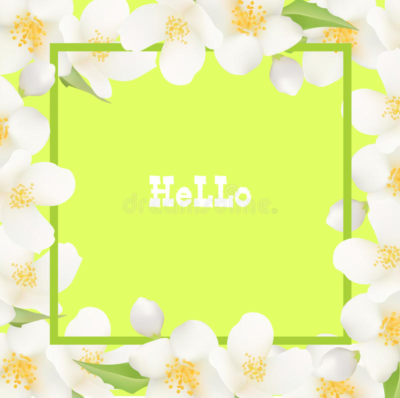 Fresh Summer Background with Jasmine White Flowers. Design Element for Greeting Cards, Invitations, Announcements, Advertisements. Vouchers, Weddings. Vector stock illustration