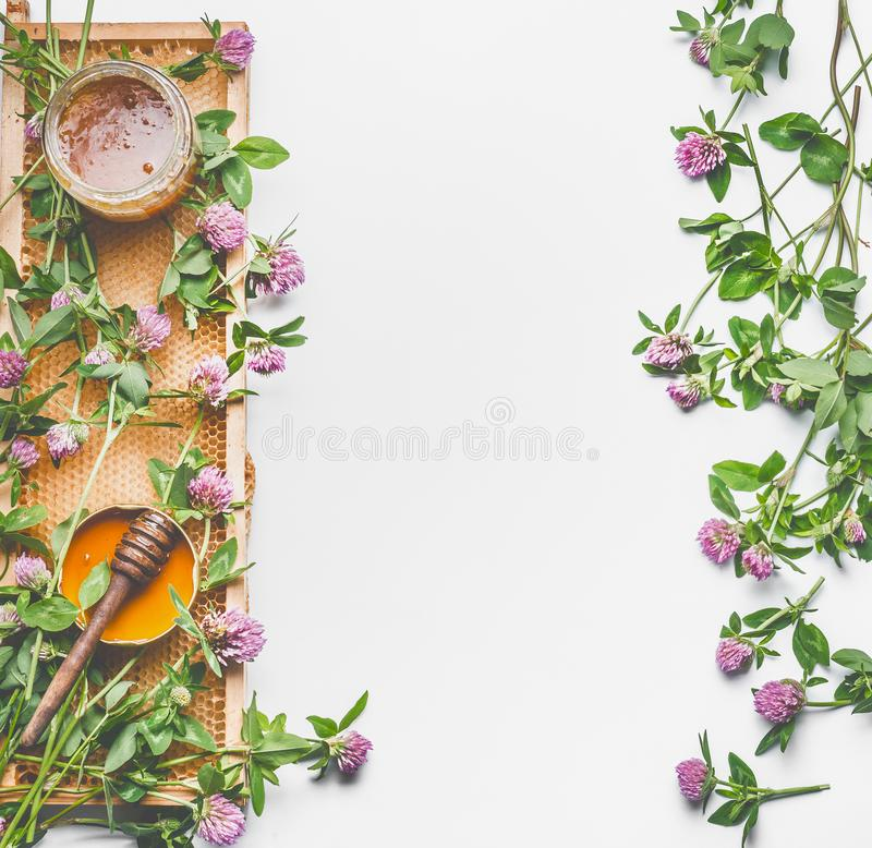 Fresh summer honey concept. Glass jar with honey, honey comb and dipper on white background with wild flowers, top view, flat lay, royalty free stock photography