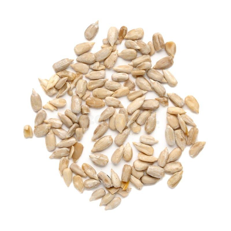 Fresh sunflower seeds stock photos