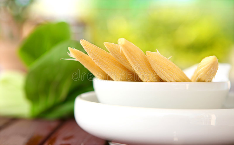 Download Fresh sweet babycorn. stock image. Image of small, crunchy - 4147055
