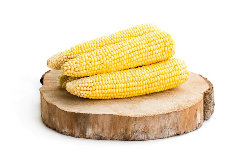 Fresh sweet corn isolated on white royalty free stock image