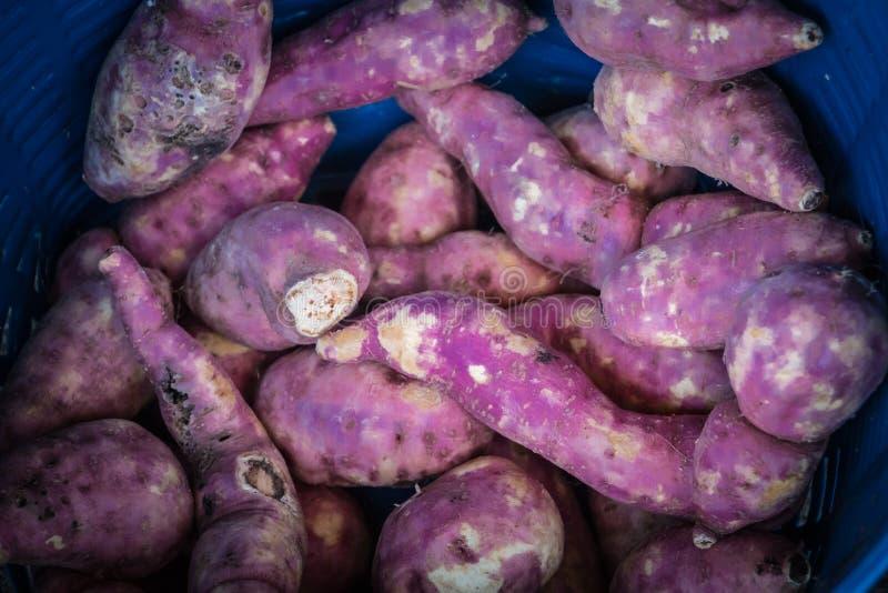 Fresh sweet potatoes stock photo