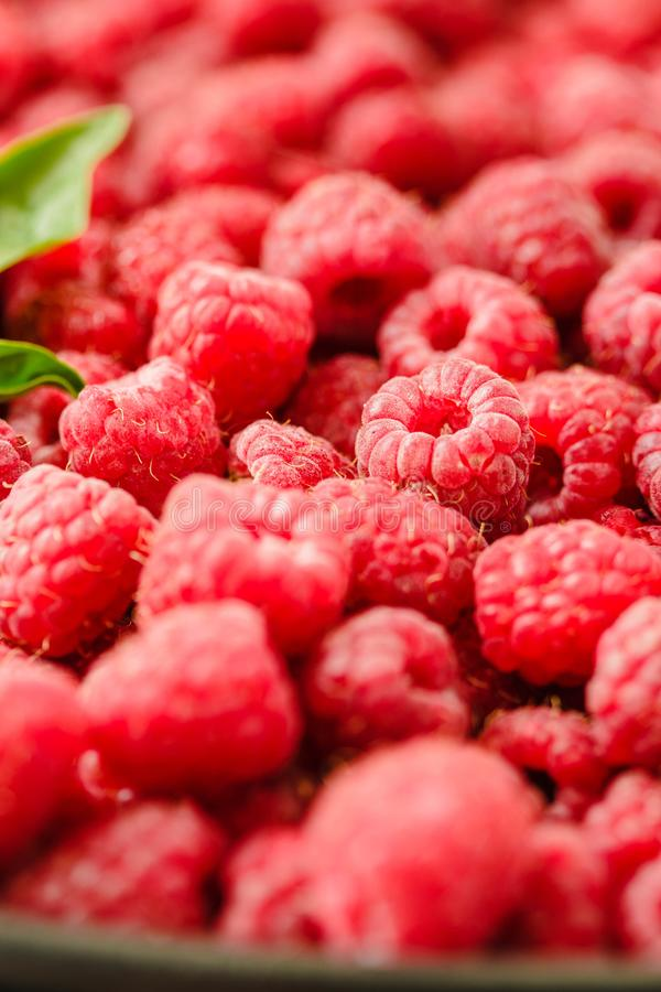 Fresh sweet raspberry and green basil.Selective focus. .Detox di stock images