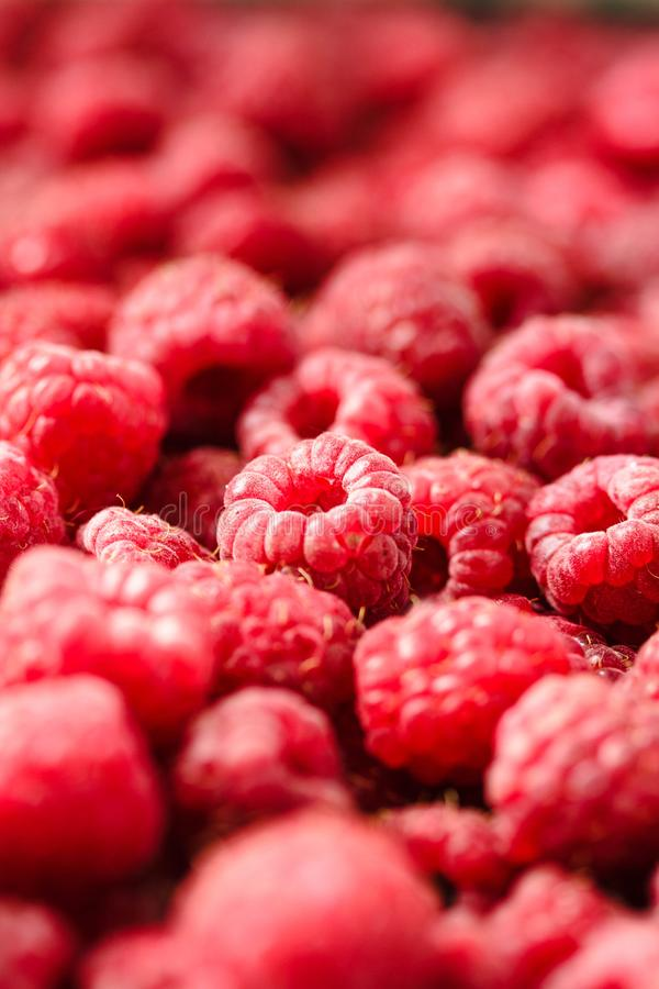 Fresh sweet raspberry and green basil.Selective focus. .Detox di stock photo