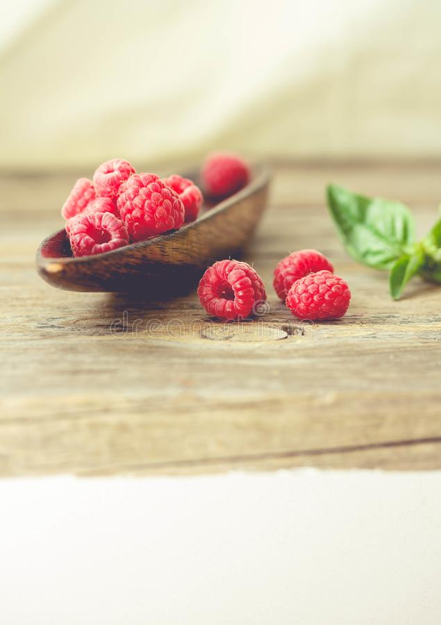 Fresh sweet raspberry and green basil in a wooden plate. Calm ga royalty free stock photo