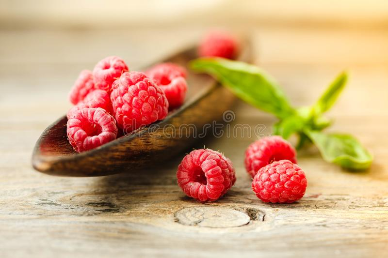 Fresh sweet raspberry and green basil in a wooden plate. Horizon stock photos