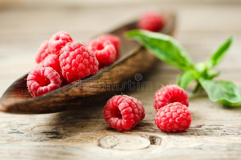 Fresh sweet raspberry and green basil in a wooden plate. Horizon royalty free stock image