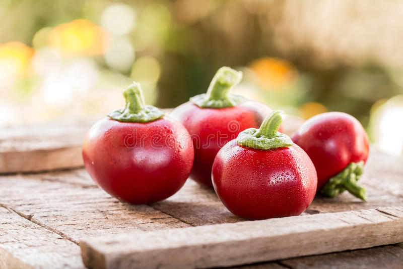 Download Fresh Sweet Red Pepper On Old Wooden Background Stock Image - Image of harvest, nature: 97932481