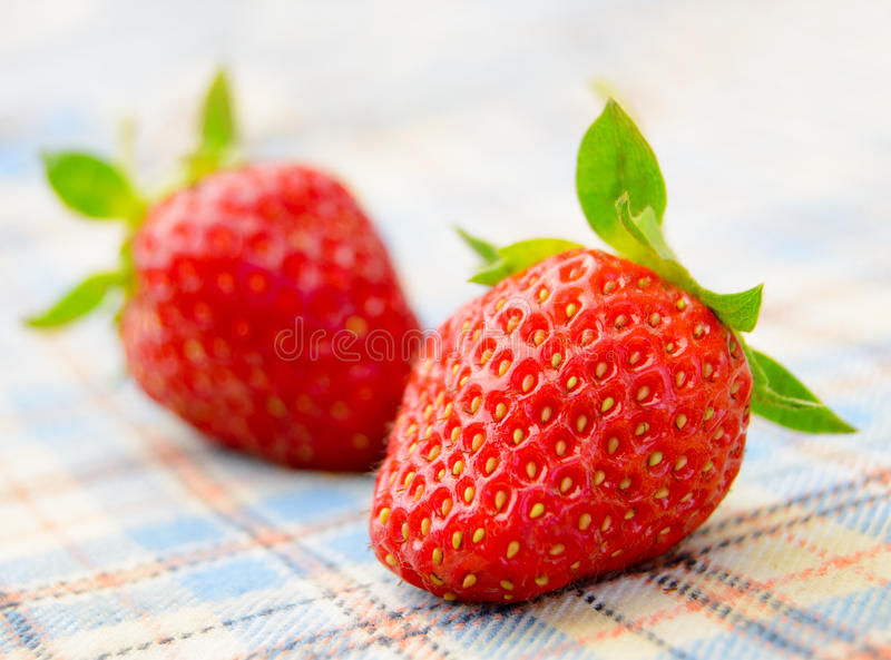 Download Fresh Sweet Strawberries On The Table Cloth Royalty Free Stock Photography - Image: 31347757