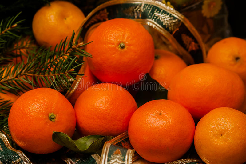 Fresh tangerine clementine with leaves and fir on dark wooden background. Christmas, New year concept. Fresh mandarins clementine with leaves and fir on dark stock photos