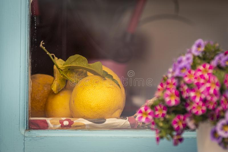 Fruits and flowers on window royalty free stock image